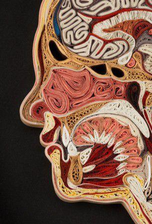 Ossa, muscoli, grasso, tessuti, tutto realizzato con minuzioni parti di carta riciclate in queste piccole opere di Lisa Nilsson.