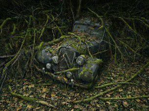 Non esiste posto migliore del centro di un bosco per parcheggiare la propria auto d'epoca. Incredibile set fotografico al limite del surreale, a cura di Peter Lippmann.