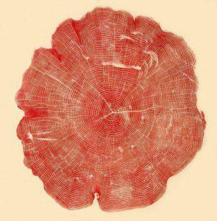 Idea semplice quanto efficace quella di Brian Nash Gill, artista statunitense del Connecticut, che ha deciso di riutilizzare vecchi tronchi intagliati per creare uniche stampe con una tecnica simile alla serigrafia.
